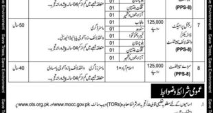 Ten Billion Tree Tsunami Programme Jobs February 2020
