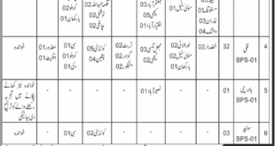 Food Department Balochistan Jobs January 2020